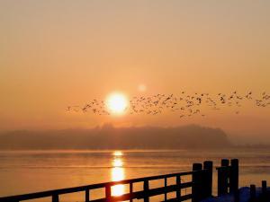 Chiemsee Sonnenuntergang am Steg